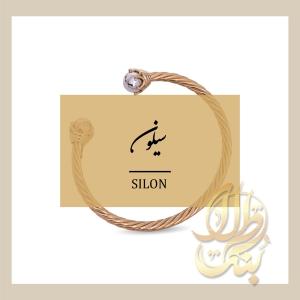 سیلون